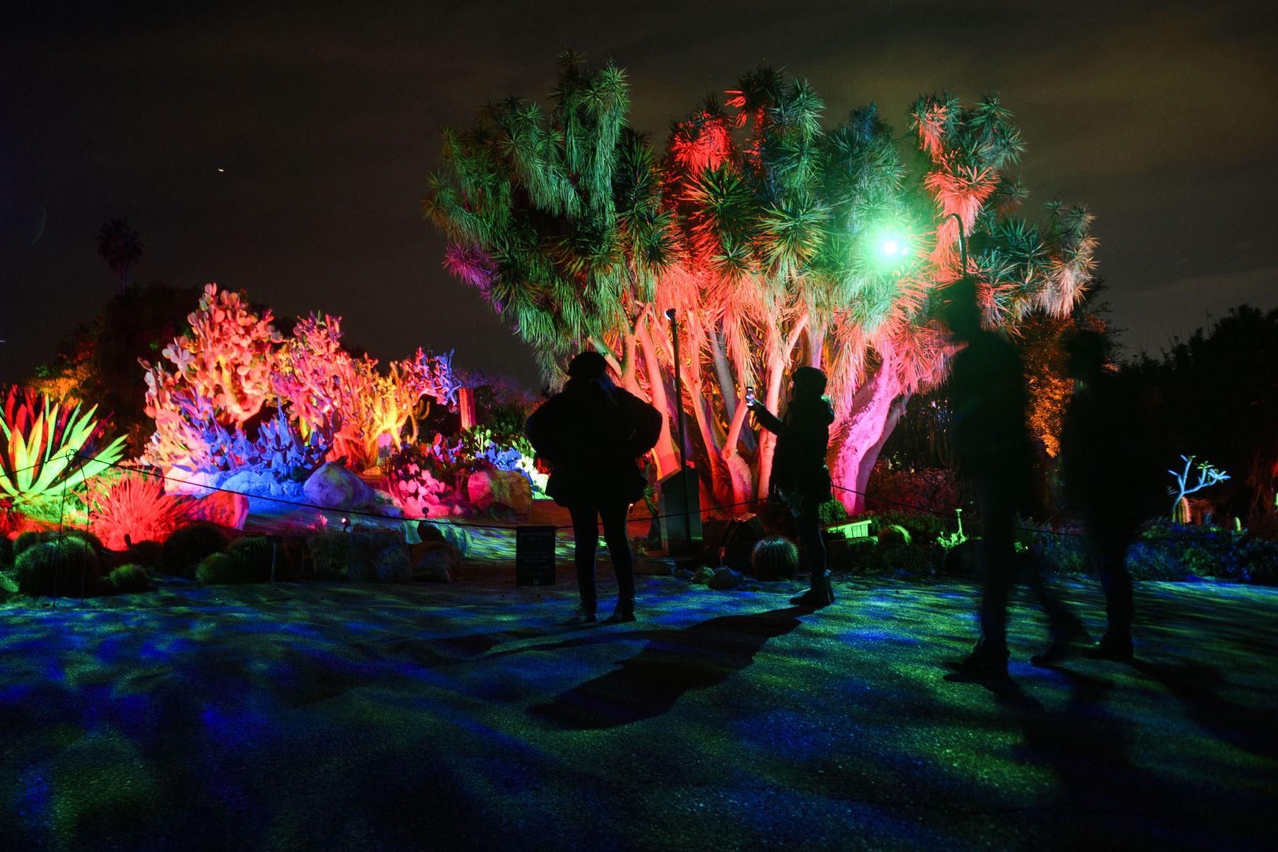 """Las personas usan máscaras faciales debido a las restricciones de Covid-19 mientras caminan al aire libre durante la exposición de luces """"Glow"""" en el Jardín Botánico de la Costa Sur en la península de Palos Verdes, California, unas horas antes del inicio de las nuevas restricciones. Foto: AFP"""