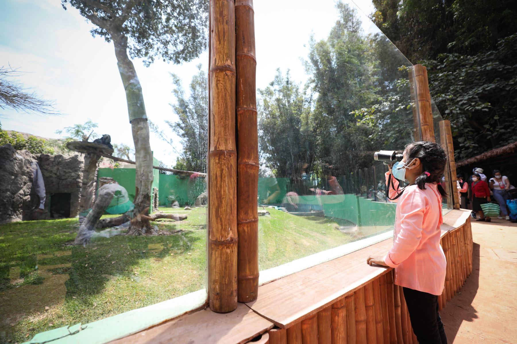 Tras varios meses de restricciones por la emergencia sanitaria decretada por el Gobierno Peruano, los niños menores de 12 años podrán disfrutar  de los espacios públicos recreativos de la Municipalidad de Lima.  Foto: Municipalidad de Lima