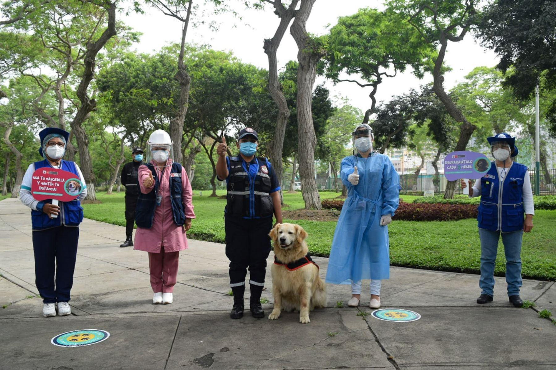 Minsa insta a la población a vacunar a sus canes para evitar el riesgo de rabia en humanos. Foto: Minsa