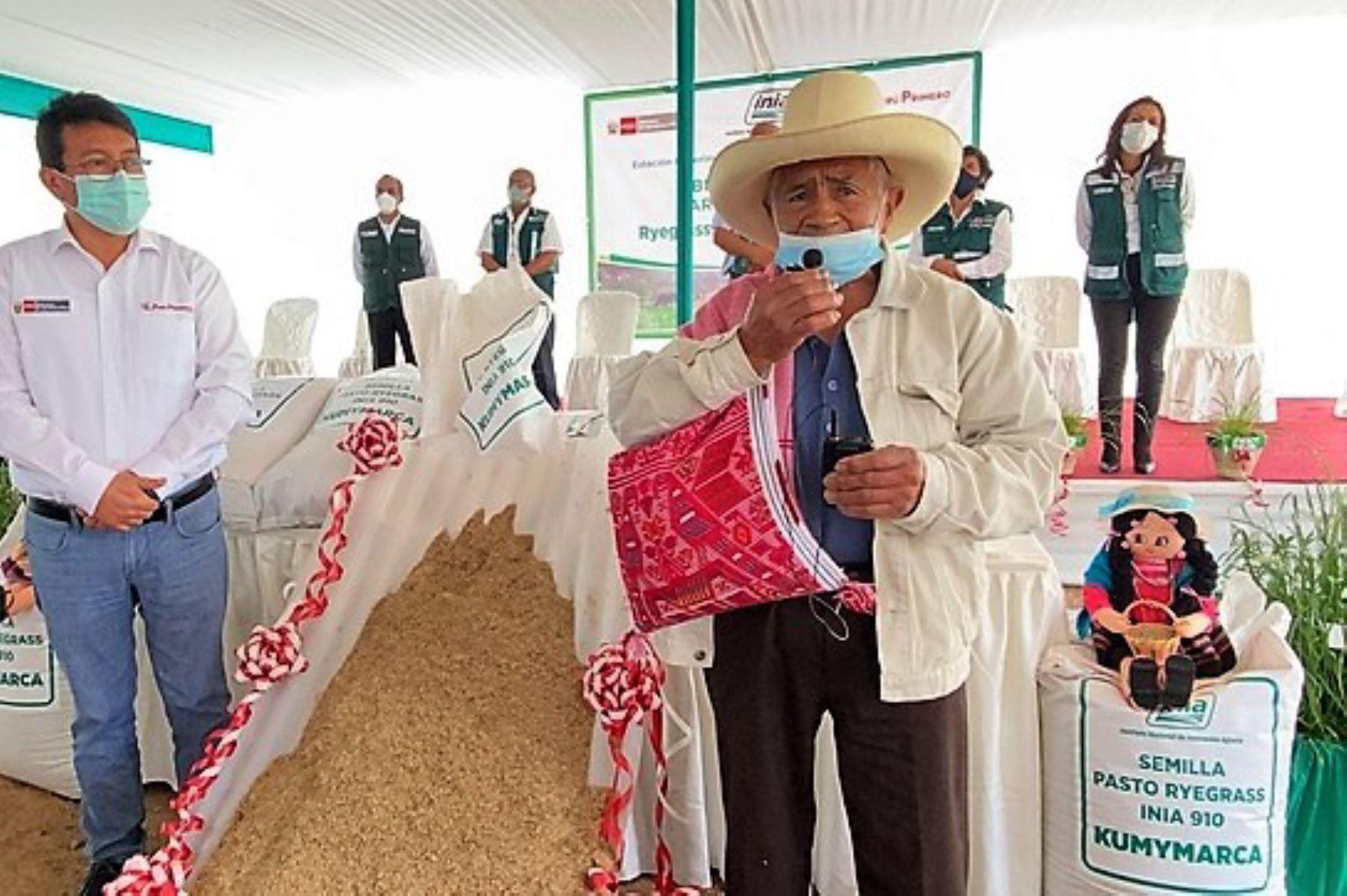 Pequeños ganaderos de la región Cajamarca saludan el desarrollo del superpasto Kumymarca por parte de los técnicos y profesionales del INIA.