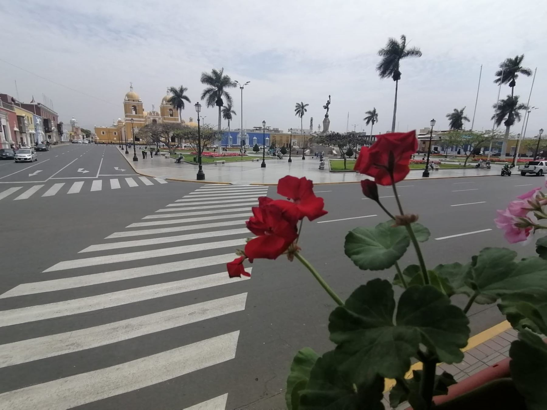 Jóvenes voluntarios impulsan el programa Trujillo Florece que promueve la colocación de maceteros con geranios en las casonas ubicadas en el perímetro de la plaza de Armas de la capital de La Libertad. Foto: Luis Puell