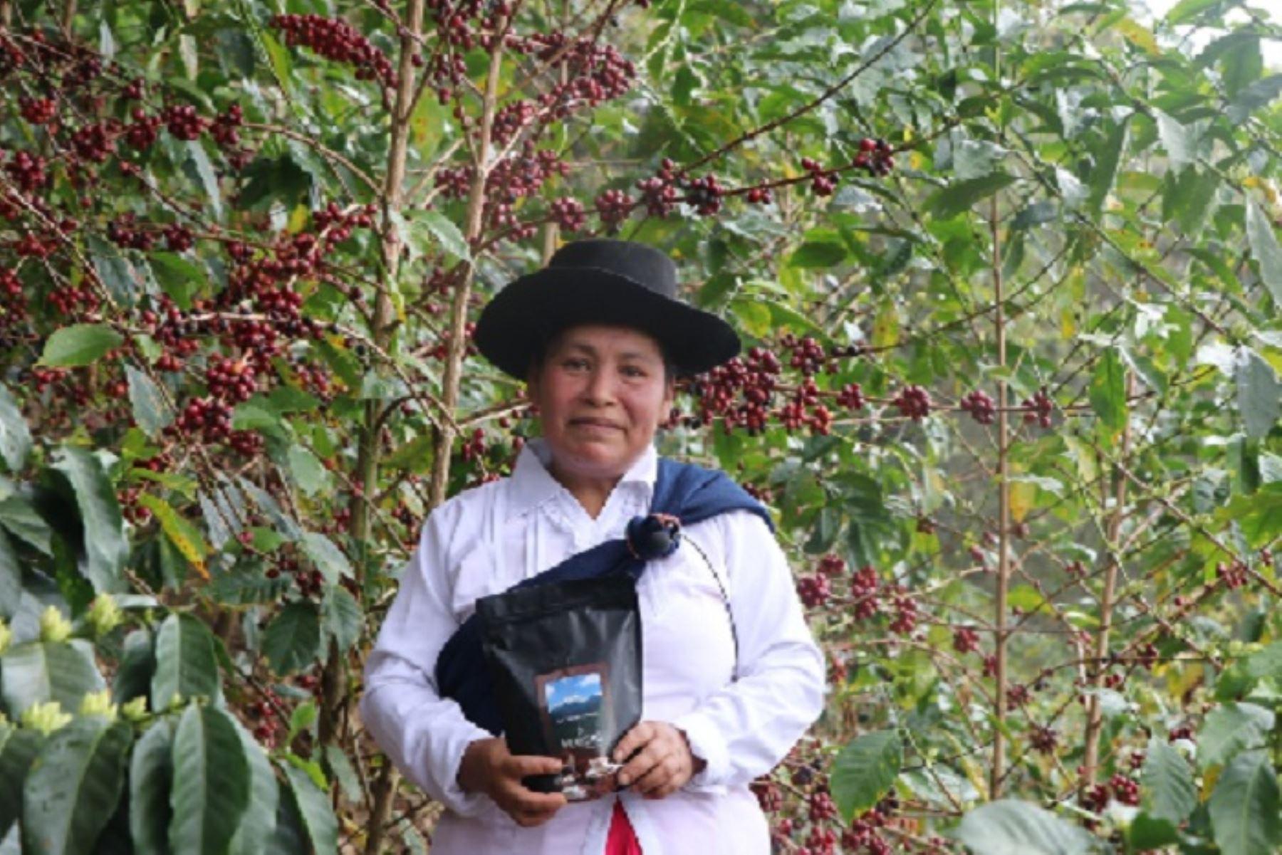 Venta de café cusqueño en subasta internacional es un excelente resultado para la industria de los cafés especiales del país.