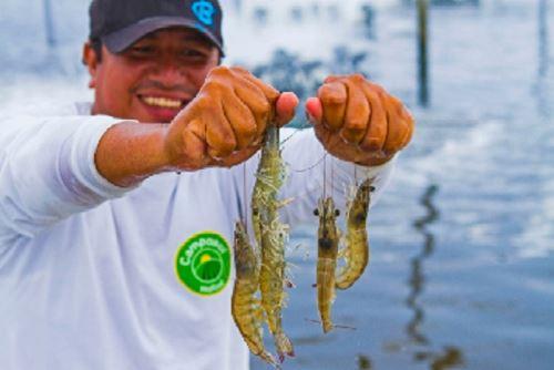 Acuicultura. Foto: ANDINA/Difusión