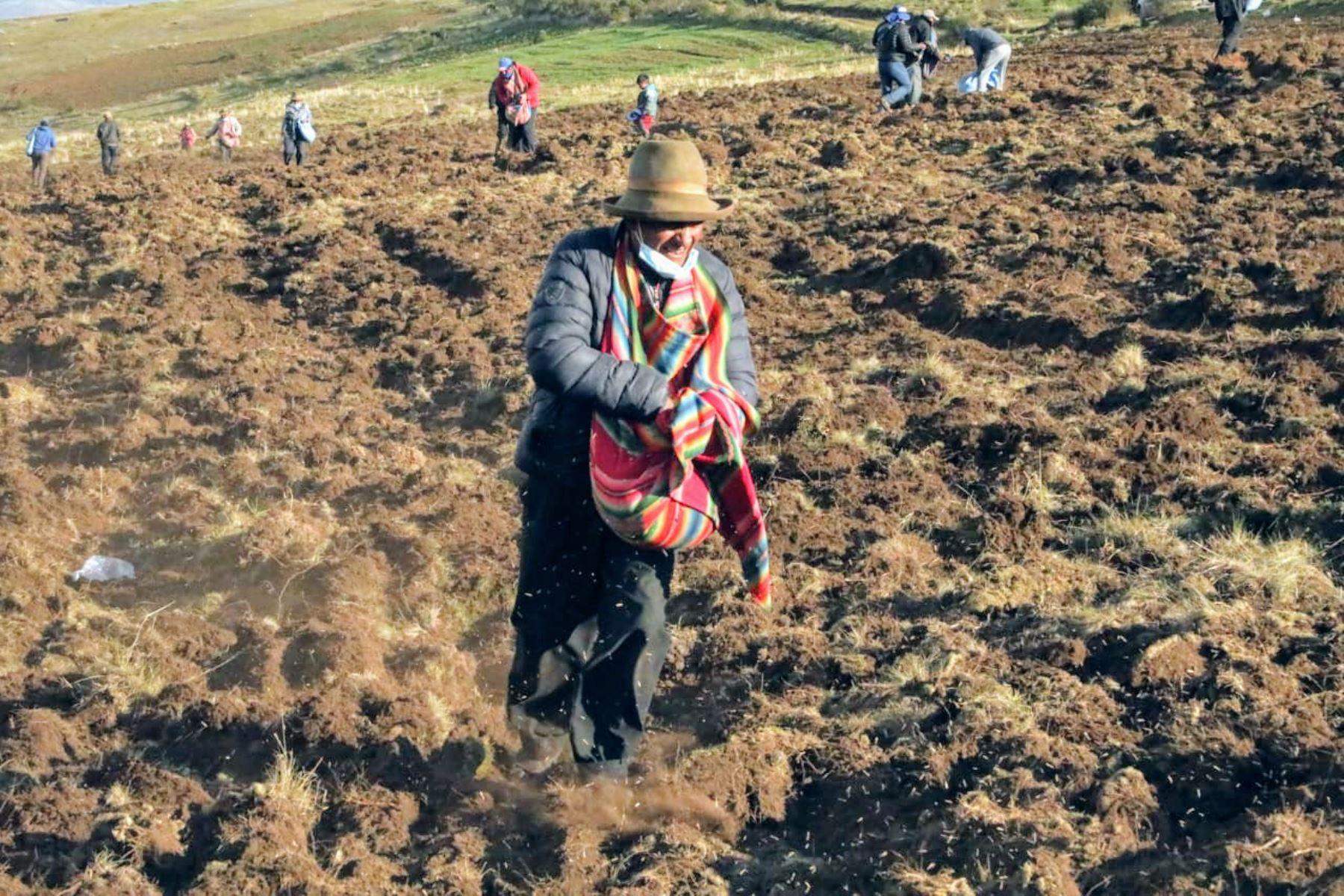 Agrobanco otorgó más de S/ 498 millones a 61,993 agricultores a setiembre