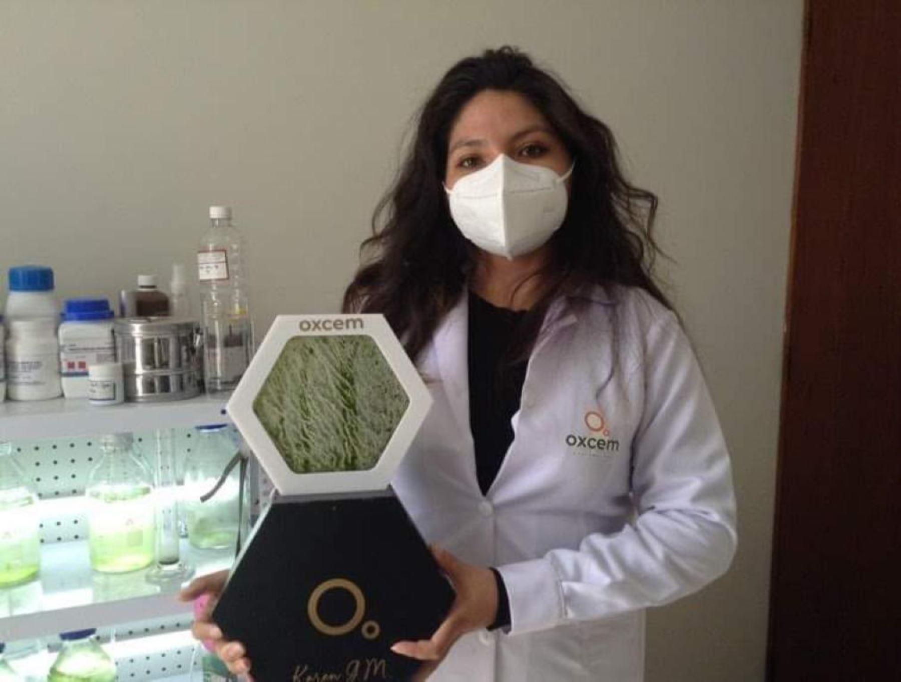 Conoce a Athalí Castro, la visionaria investigadora arequipeña que ganó premio del MIT gracias a su proyecto que propone el uso de biorrectores de microalgas para combatir la contaminación ambiental.