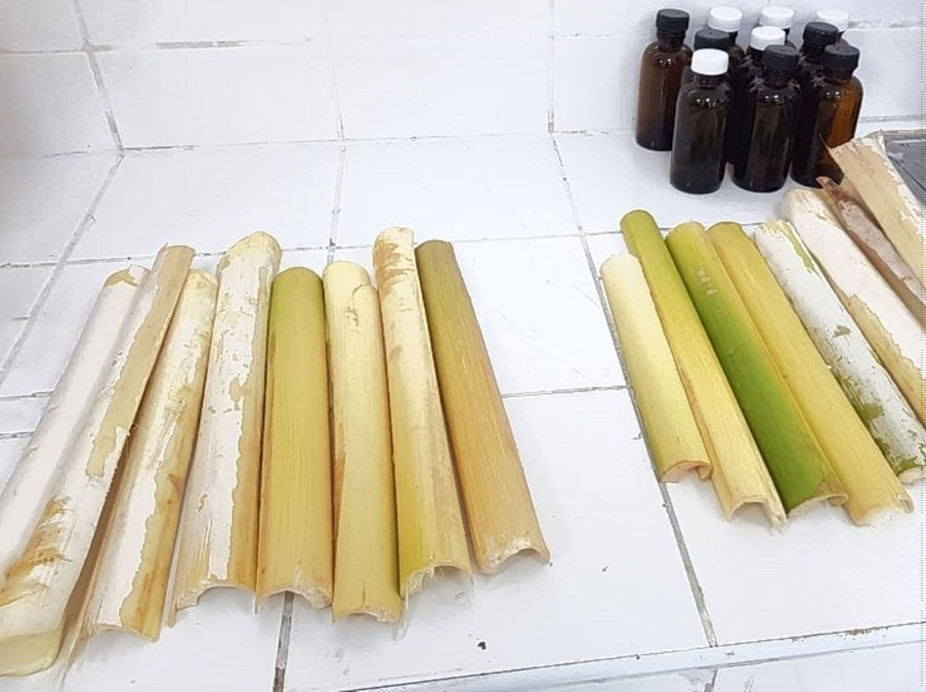 Investigadores de la Universidad Nacional Toribio Rodríguez de Mendoza de Amazonas desarrollan un proyecto que plantea elaborar alimentos a partir de residuos de la industria palmitera.