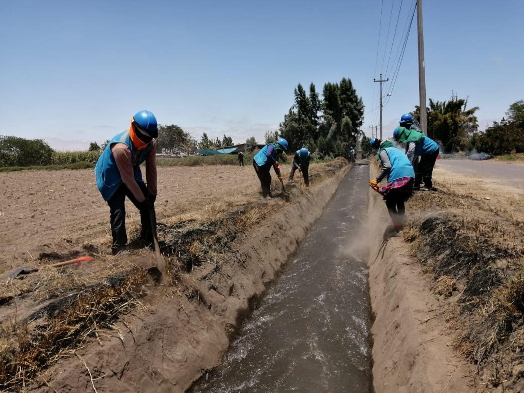 Mantenimiento de canales y drenes de riego en Tacna. ANDINA/Difusión