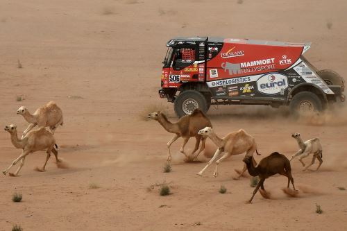 Las mejores imágenes de la etapa 10 del Dakar 2021