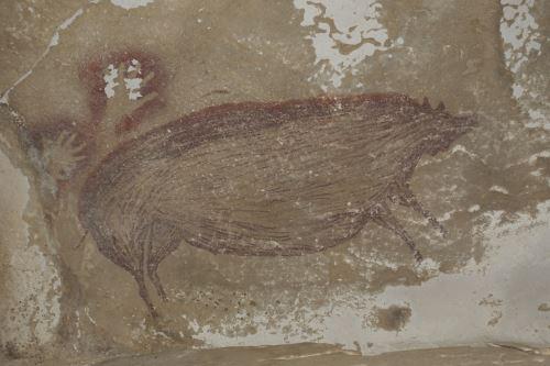 De 136 centímetros de largo por 54 de alto, el jabalí verrugoso de Célebes fue pintado con pigmento ocre rojo oscuro y tiene una pequeña cresta de pelos, así como un par de las verrugas faciales en forma de cuerno características de los machos adultos de la especie. Foto: AFP