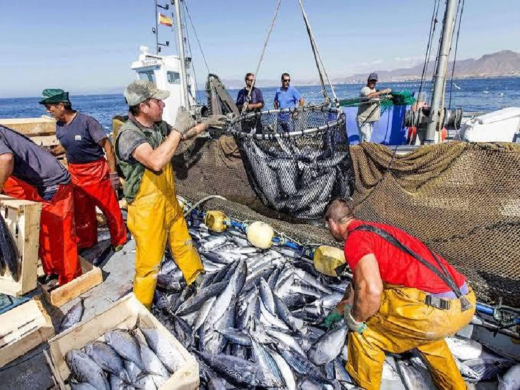 La pesca peruana ha sabido capear los temporales más difíciles, incluyendo la pandemia. ANDINA/Difusión