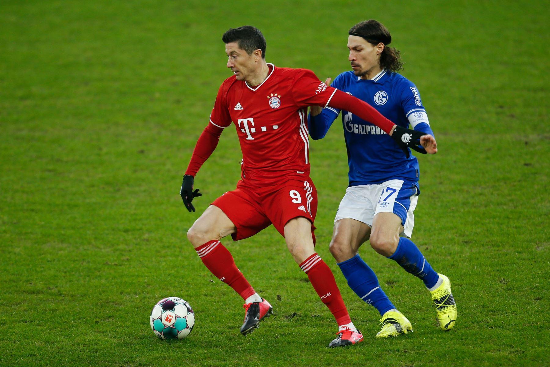 El delantero polaco del Bayern Munich Robert Lewandowski y el centrocampista francés del Schalke, Benjamin Stambouli, disputan el balón durante el partido de fútbol de la Bundesliga de primera división alemana Schalke 04 v FC Bayern Munich en Gelsenkirchen, Alemania occidental. Foto: AFP