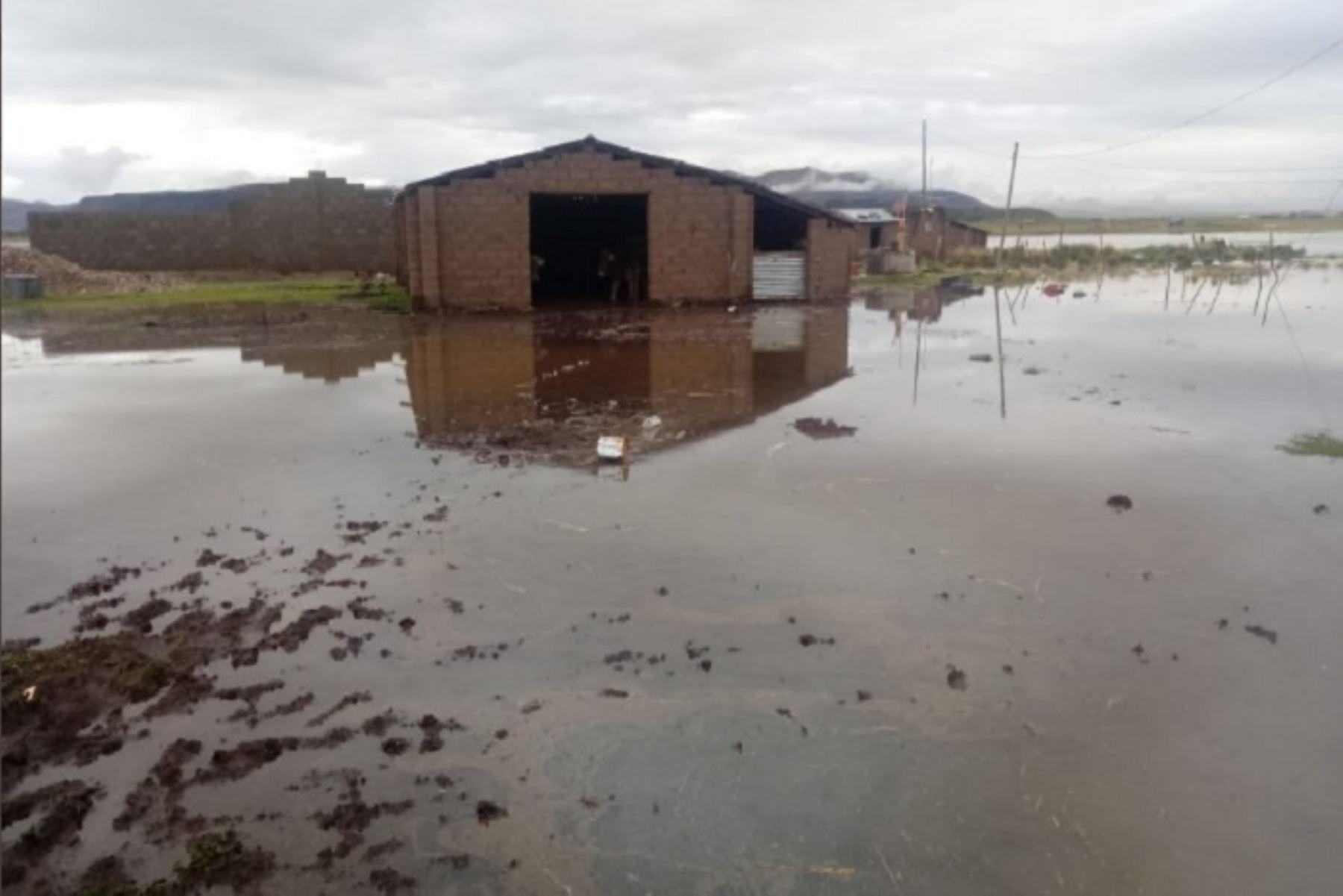 rio-vilque-se-desborda-y-dana-10-viviendas-cultivos-y-camino-rural-en-provincia-de-puno