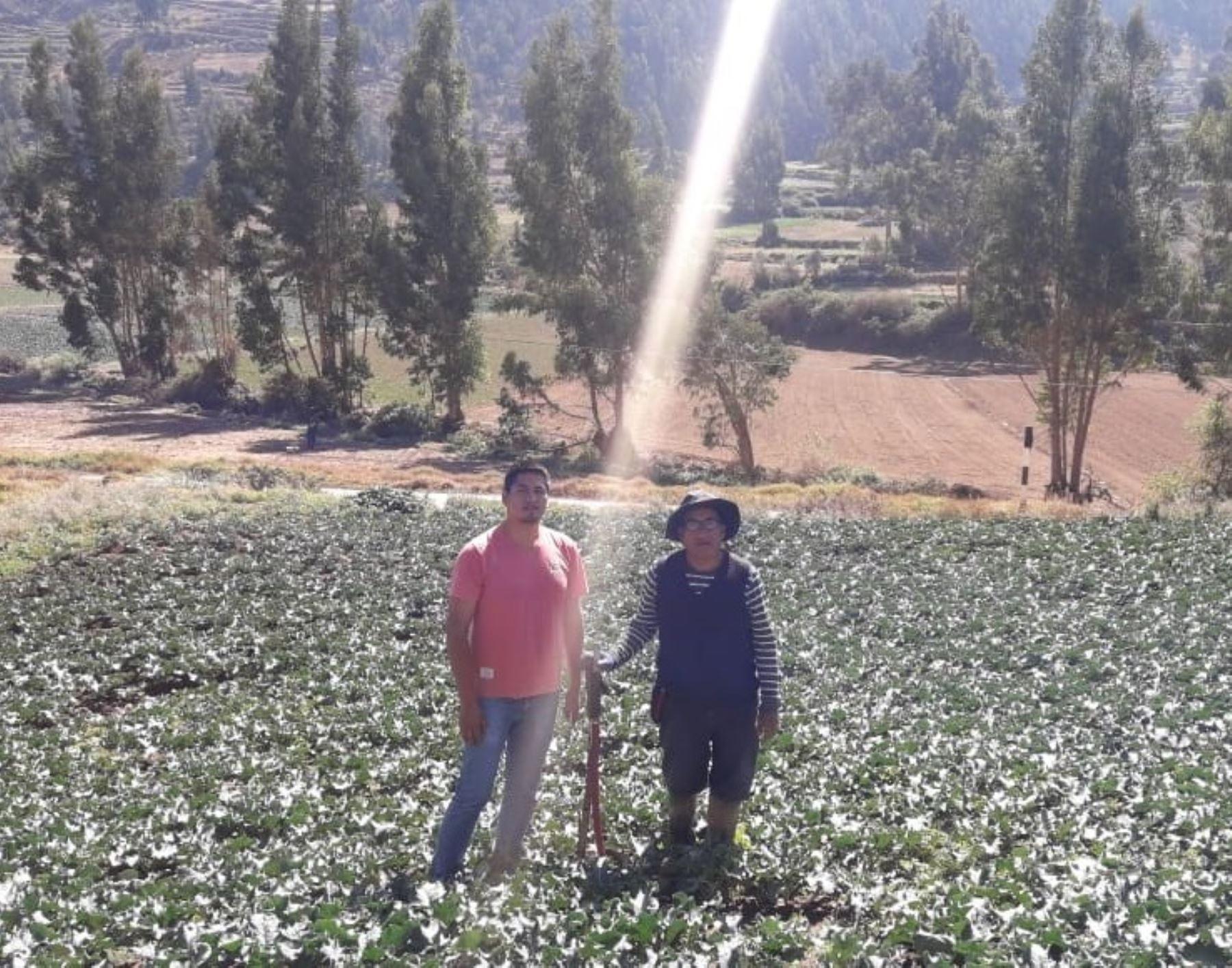 Estudiantes de la Universidad Nacional Mayor de San Marcos diseñan sistema que automatiza el riego de cultivos para prevenir las heladas y proteger los cultivos. ANDINA/Difusión