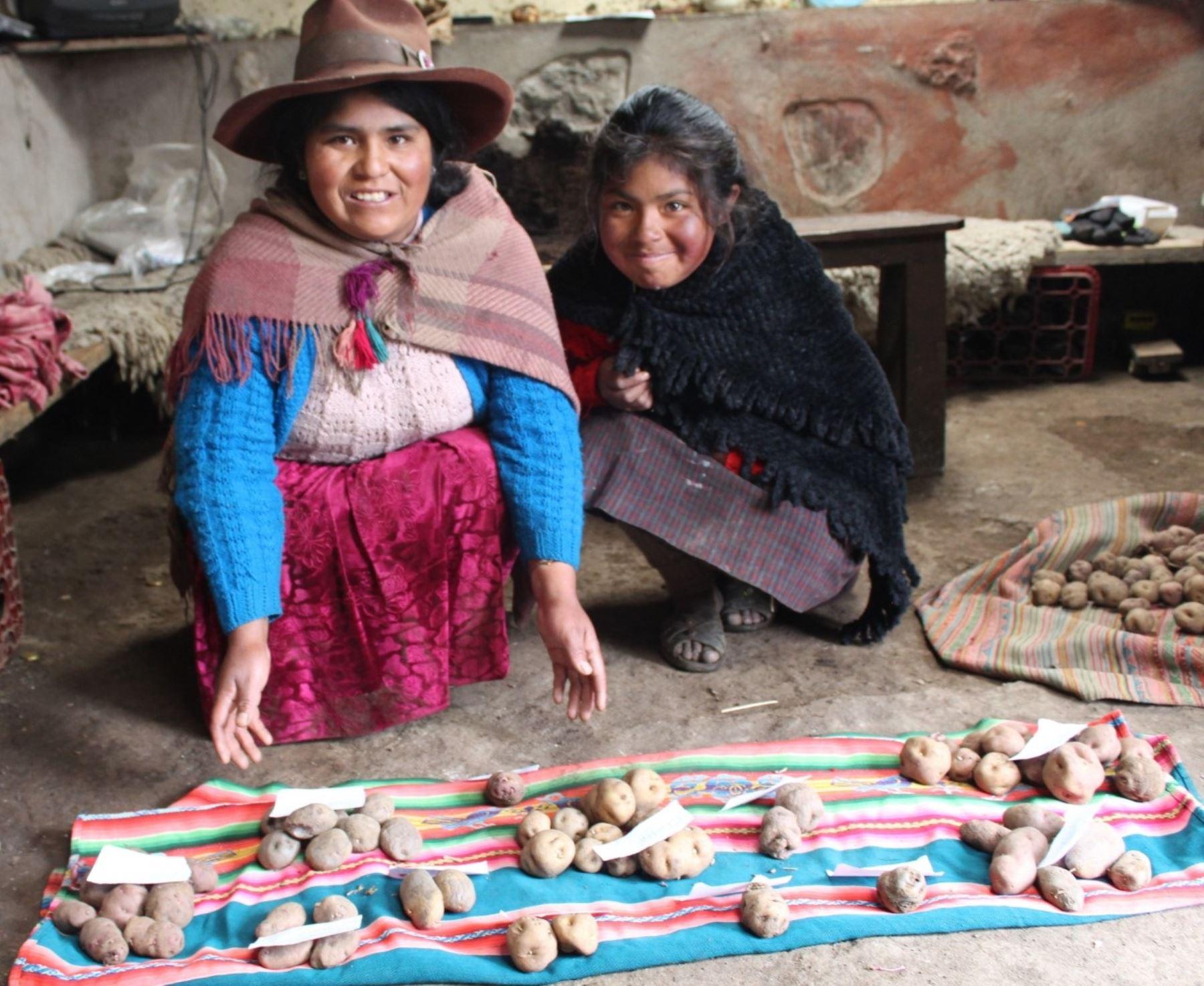 Conoce Marcapata Ccollana, la nueva estrella de la agrobiodiversidad del Perú, reconocida por el Ministerio de Desarrollo Agrario y Riego (Midagri), que atesora diversos cultivos andinos. ANDINA/Difusión