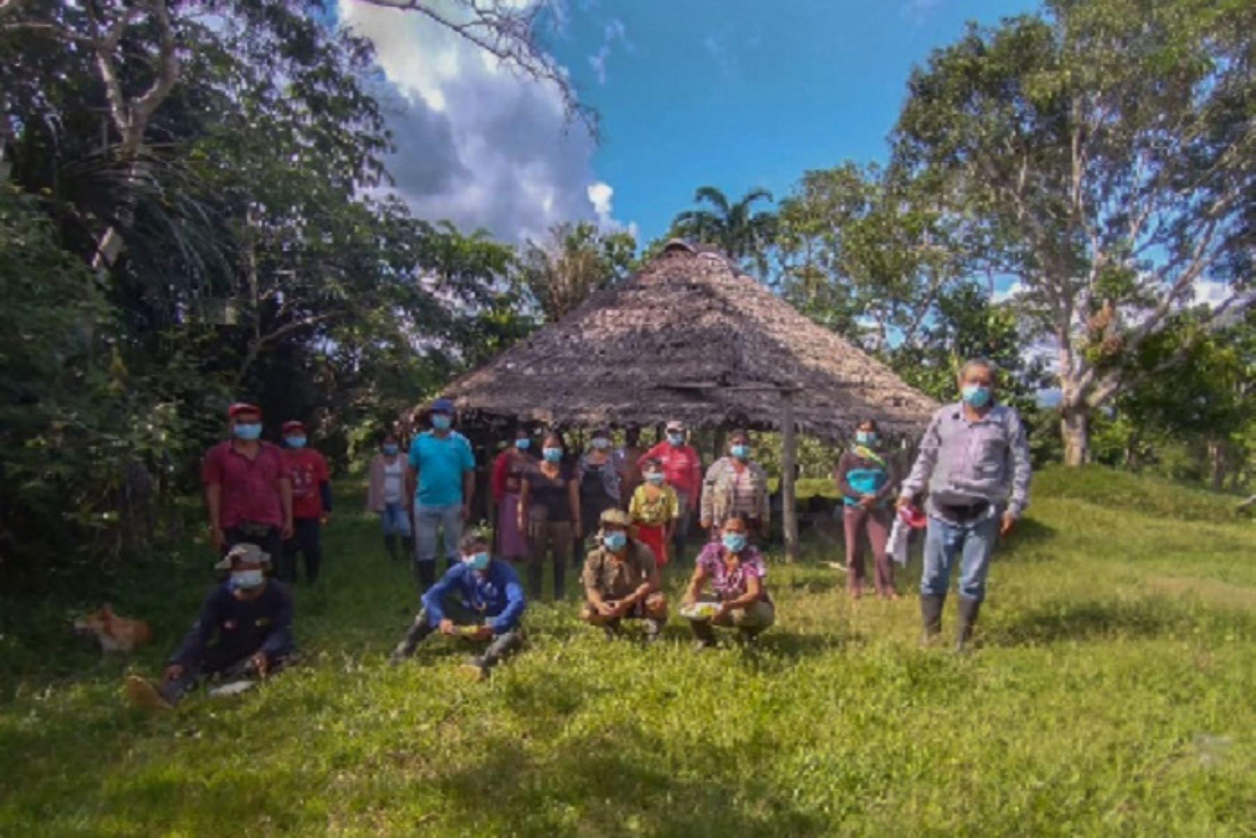 loreto-familias-de-comunidades-indigenas-reforestaran-con-arboles-de-palo-rosa