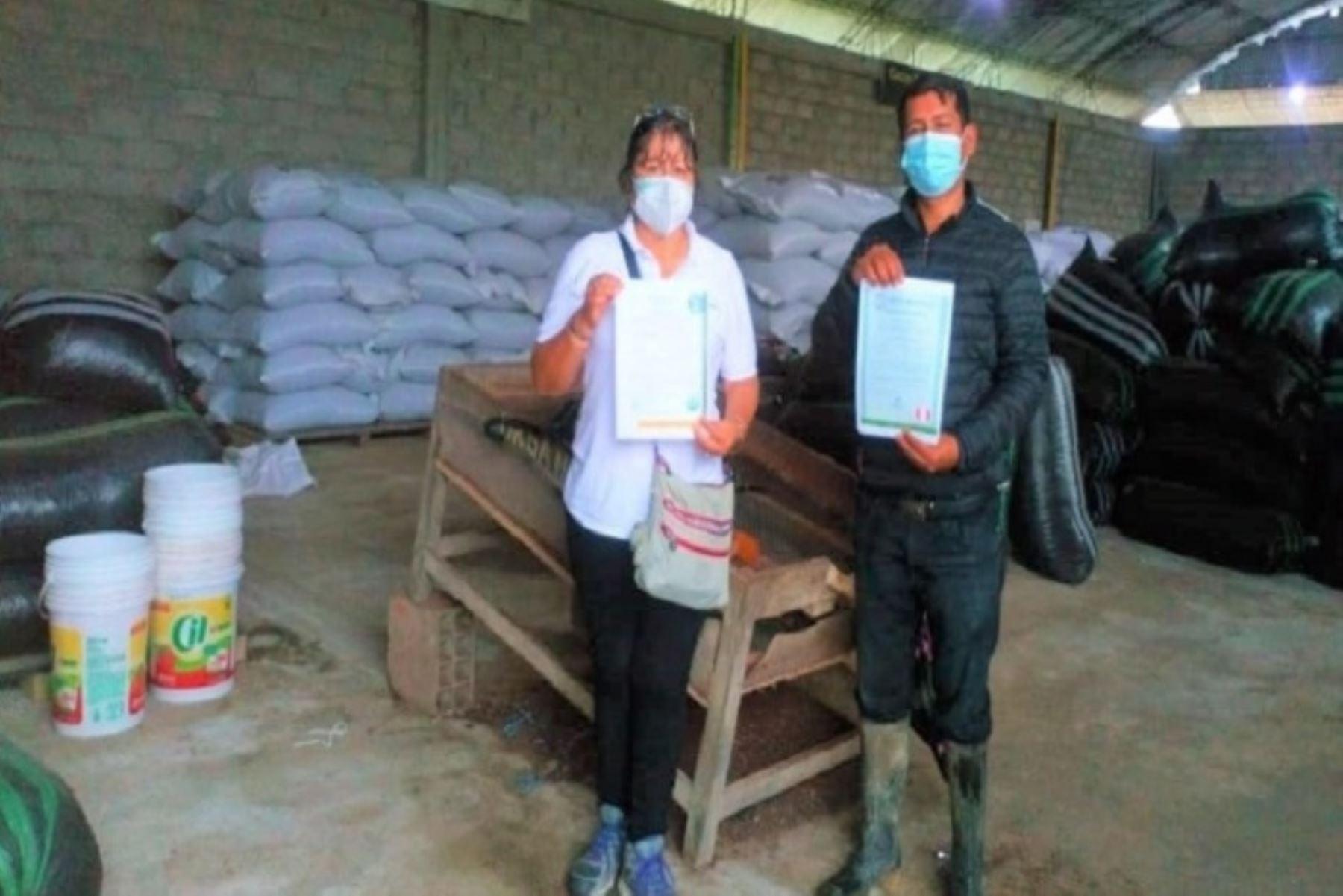 san-martin-cooperativas-de-campanilla-y-polvora-logran-certificacion-de-cacao-organico