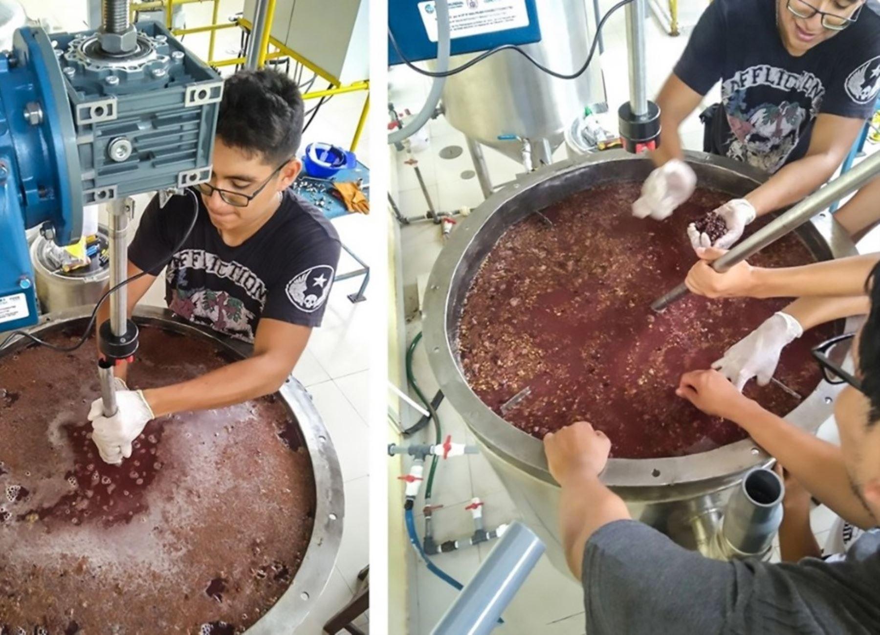 Investigadores de la UNI desarrollan un estudio que busca optimizar la producción de pisco, nuestra bebida bandera, con desechos de la uva. ANDINA/Difusión