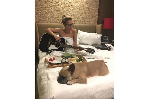 Los bulldogs franceses son una raza codiciada y cara que puede venderse por miles de dólares. Foto: Instagram de Lady Gaga