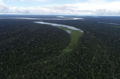 Desde el 15 de febrero, a consecuencia de las intensas lluvias se produjo el incremento del caudal y posterior desborde del río Ucayali. Foto: ANDINA/Difusión
