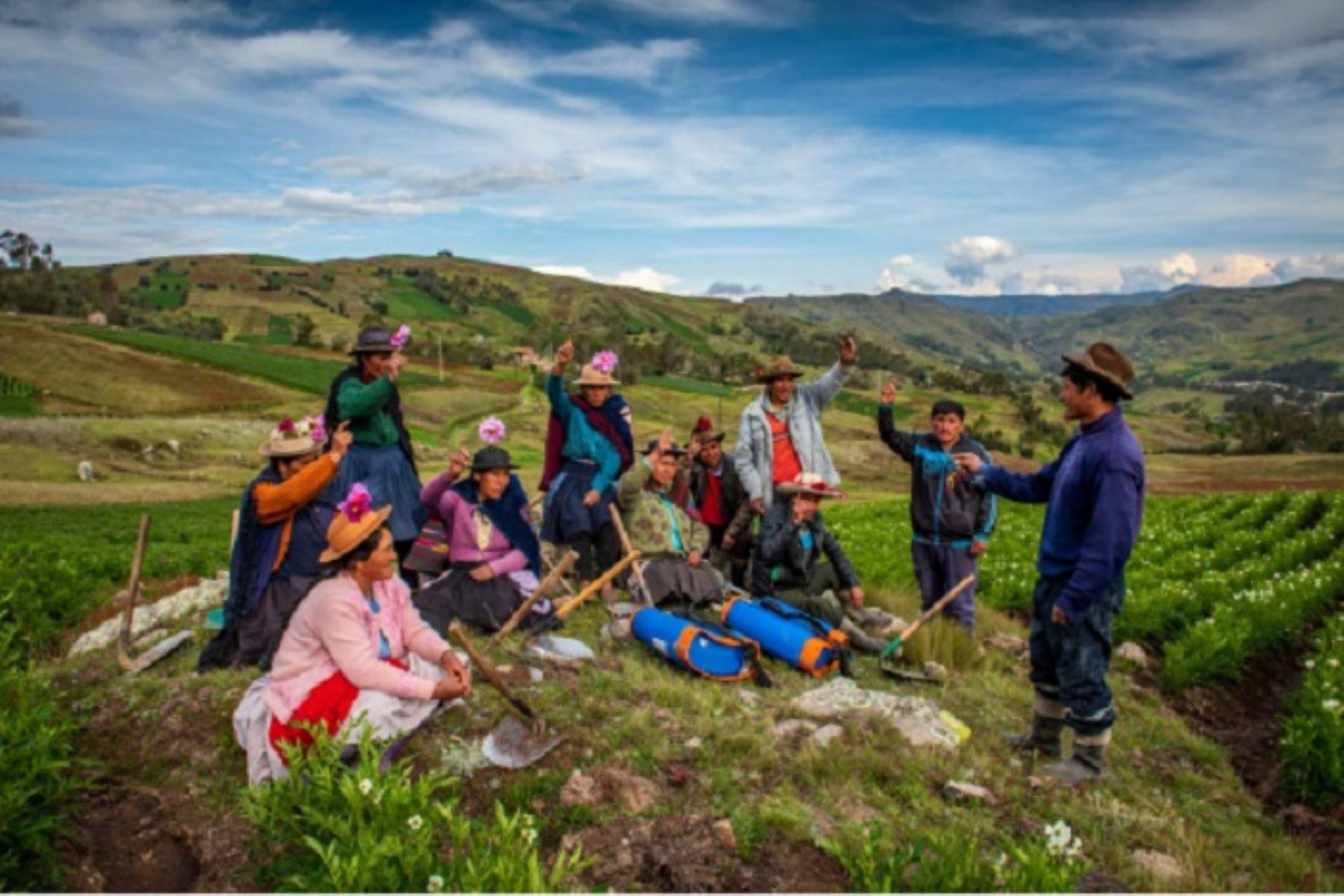 Se ha cofinanciado cerca de mil iniciativas económicas locales dirigidas por agricultoras en la Sierra y la Selva.