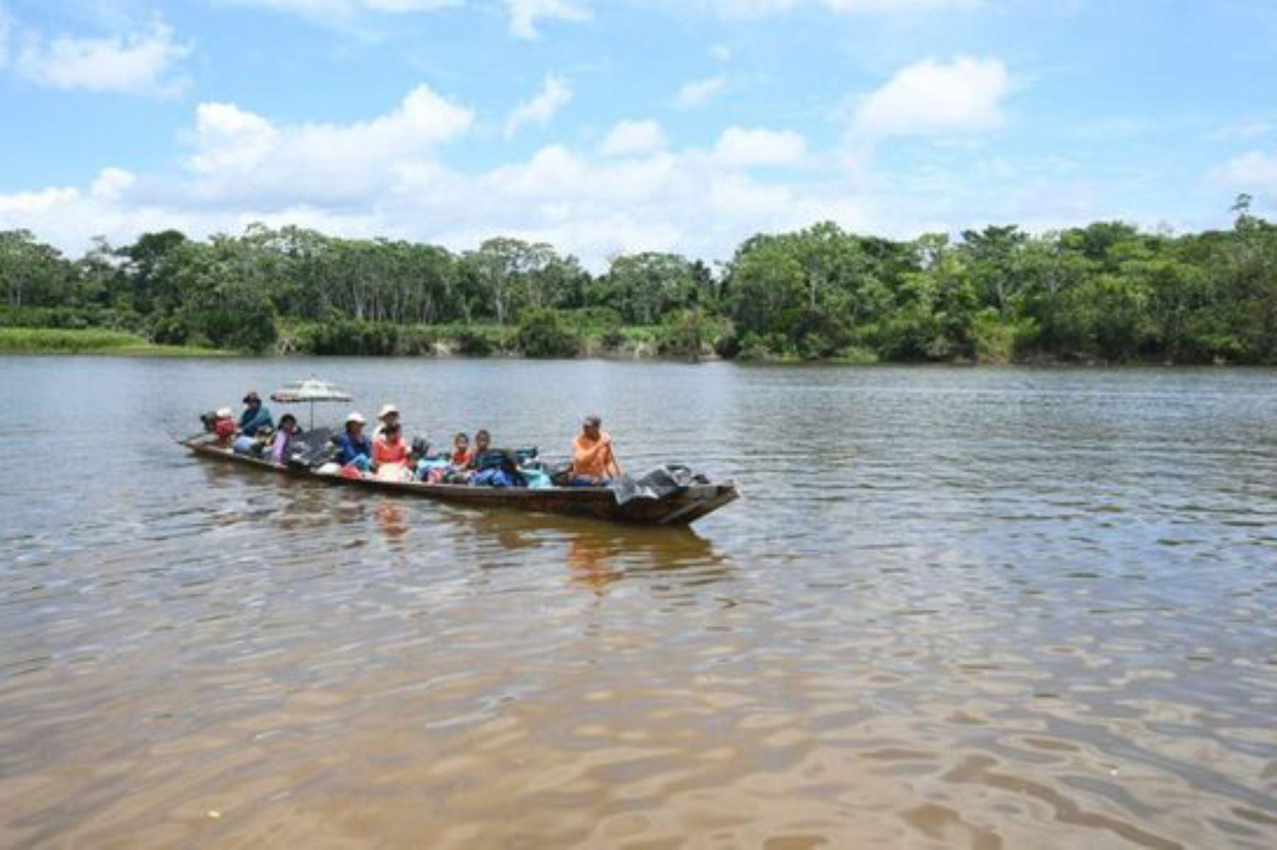 Paisaje amazónico. Foto: ANDINA/difusión.