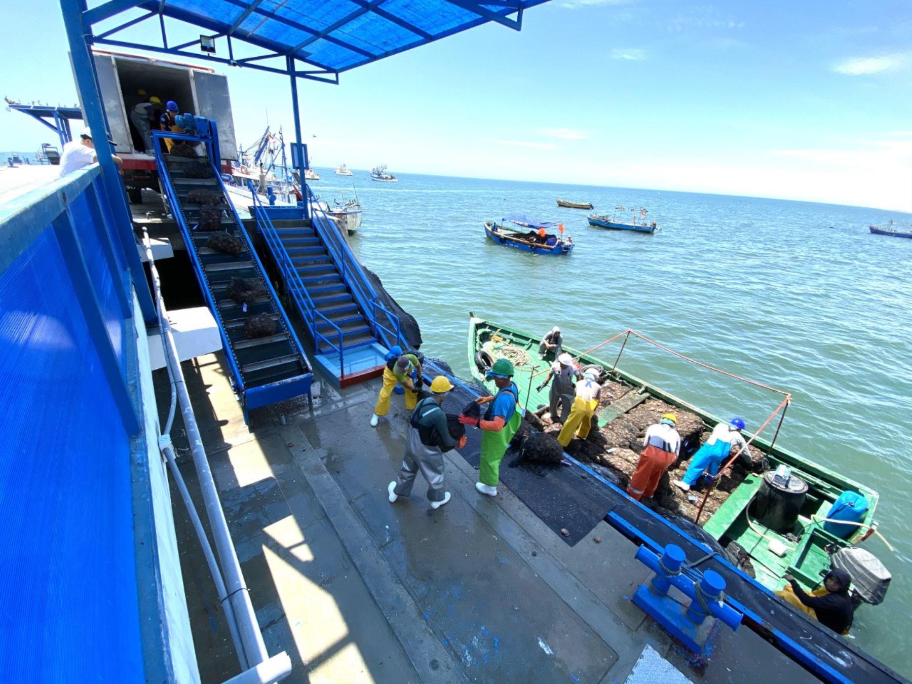 Sanipes capacitará a más de 3,000 pescadores artesanales y productores artesanales del país.