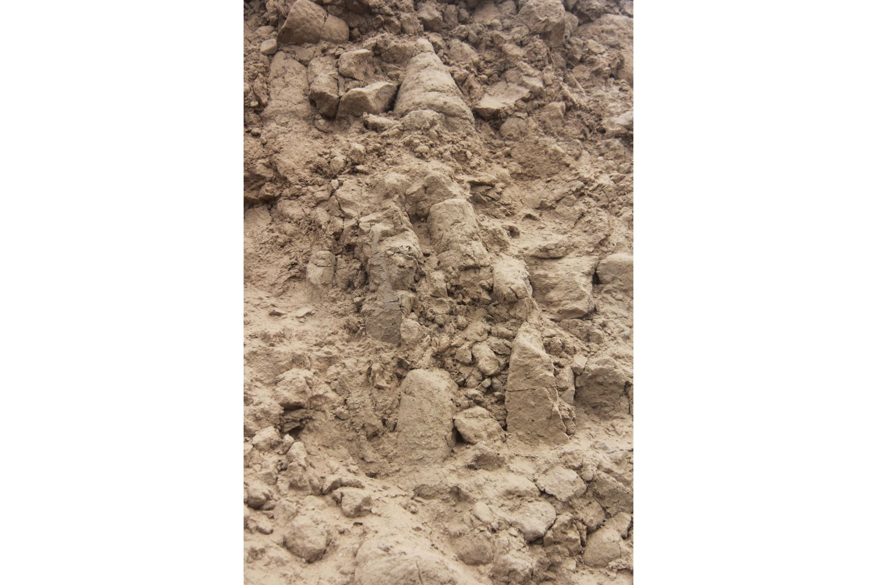 En medio de cultivos de palta y caña de azúcar, en el corazón del valle de la provincia de Virú, región La Libertad, se encuentra una huaca en cuya fachada sur exhibe una pintura mural de más de más de 3,200 años de antigüedad que pertenecería a la cultura Cupisnique. Foto: Luis Puell