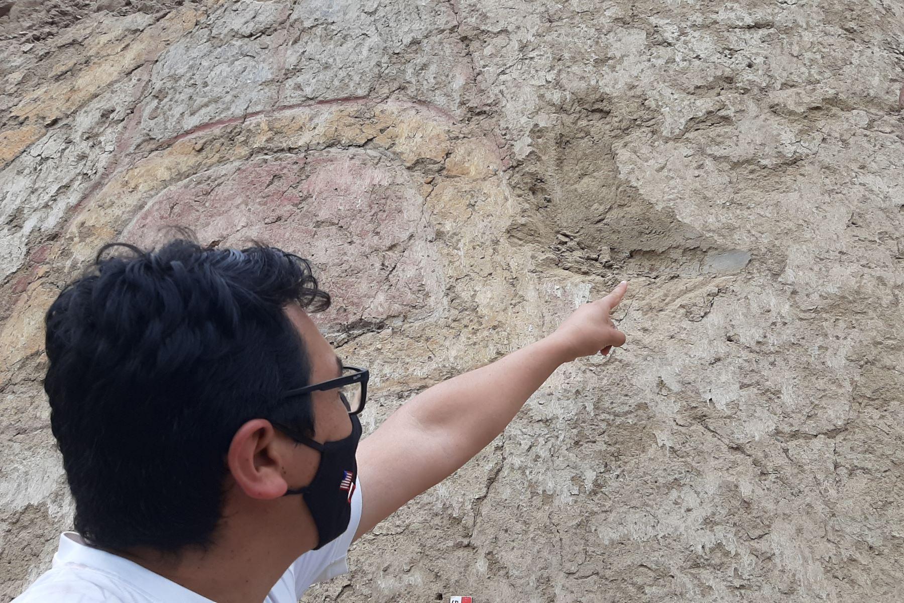Investigadores realizaron un importante hallazgo arqueológico en La Libertad, al descubrir un pintura mural de más de 3,200 años en el valle de Virú. Foto: Luis Puell