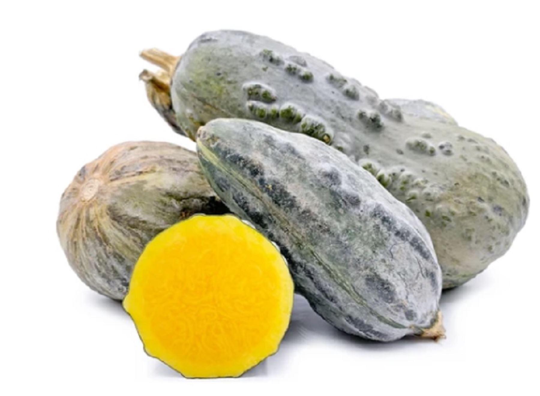 En términos nutricionales, el zapallo loche es considerado un superalimento, dado que es rico en vitamina C y betacaroteno o provitamina A; minerales como calcio, fósforo y hierro, así como proteínas y carbohidratos. INTERNET/Medios