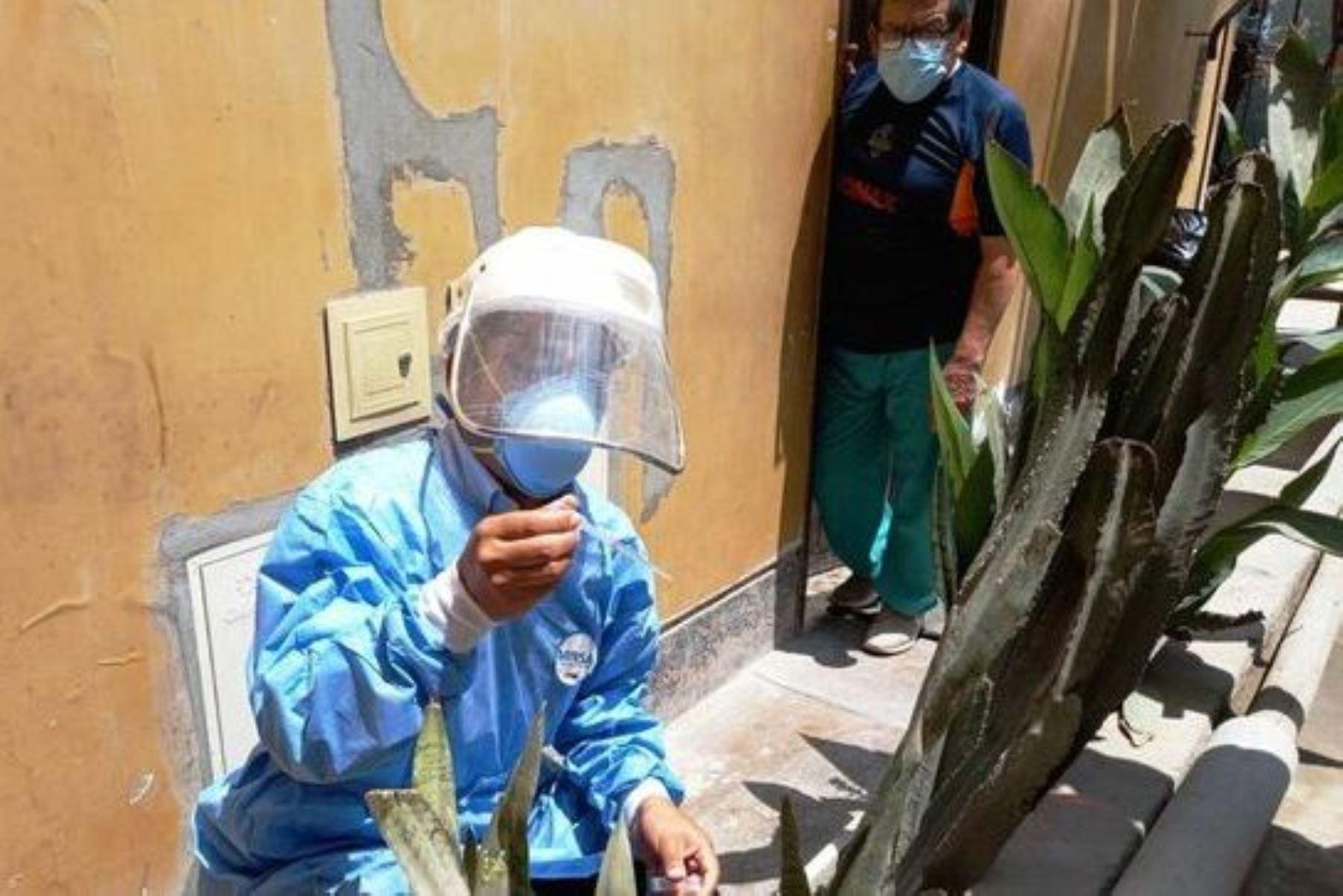 Dengue: intervendrán cerca de 3,000 viviendas de Lima Sur para identificar posibles focos. Foto: ANDINA/Difusión.
