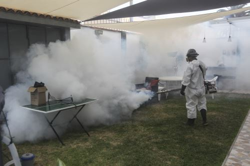 El Ministerio de Salud (Minsa), a través de la Dirección General de Salud Ambiental (Digesa), junto a la Gerencia Regional de Salud (Geresa) de Arequipa, llevó a cabo fumigaciones en viviendas del distrito arequipeño de Yauca. Foto: ANDINA/Carla Patiño Ramírez.