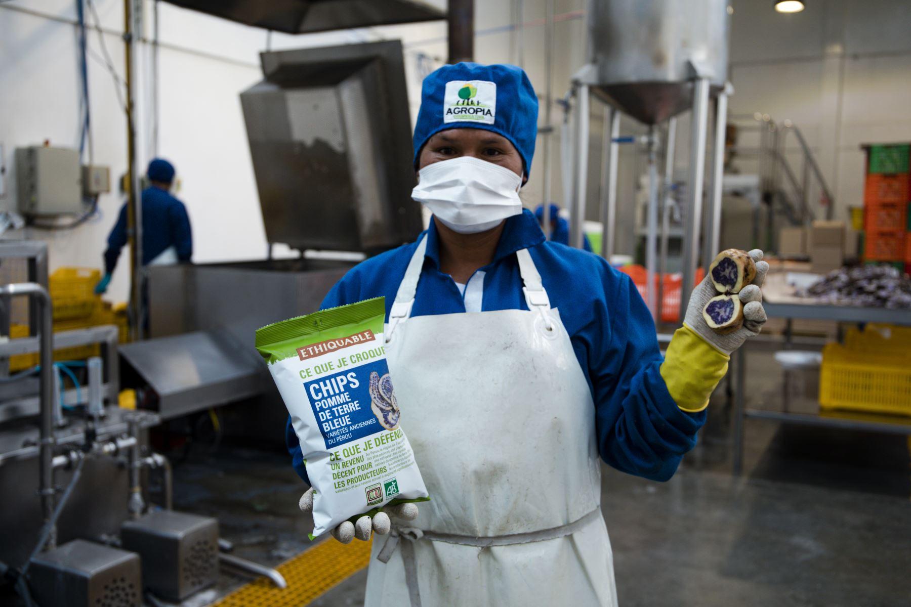MIDAGRI: Más de 4,800 productores de la Agricultura Familiar operan plantas procesadoras