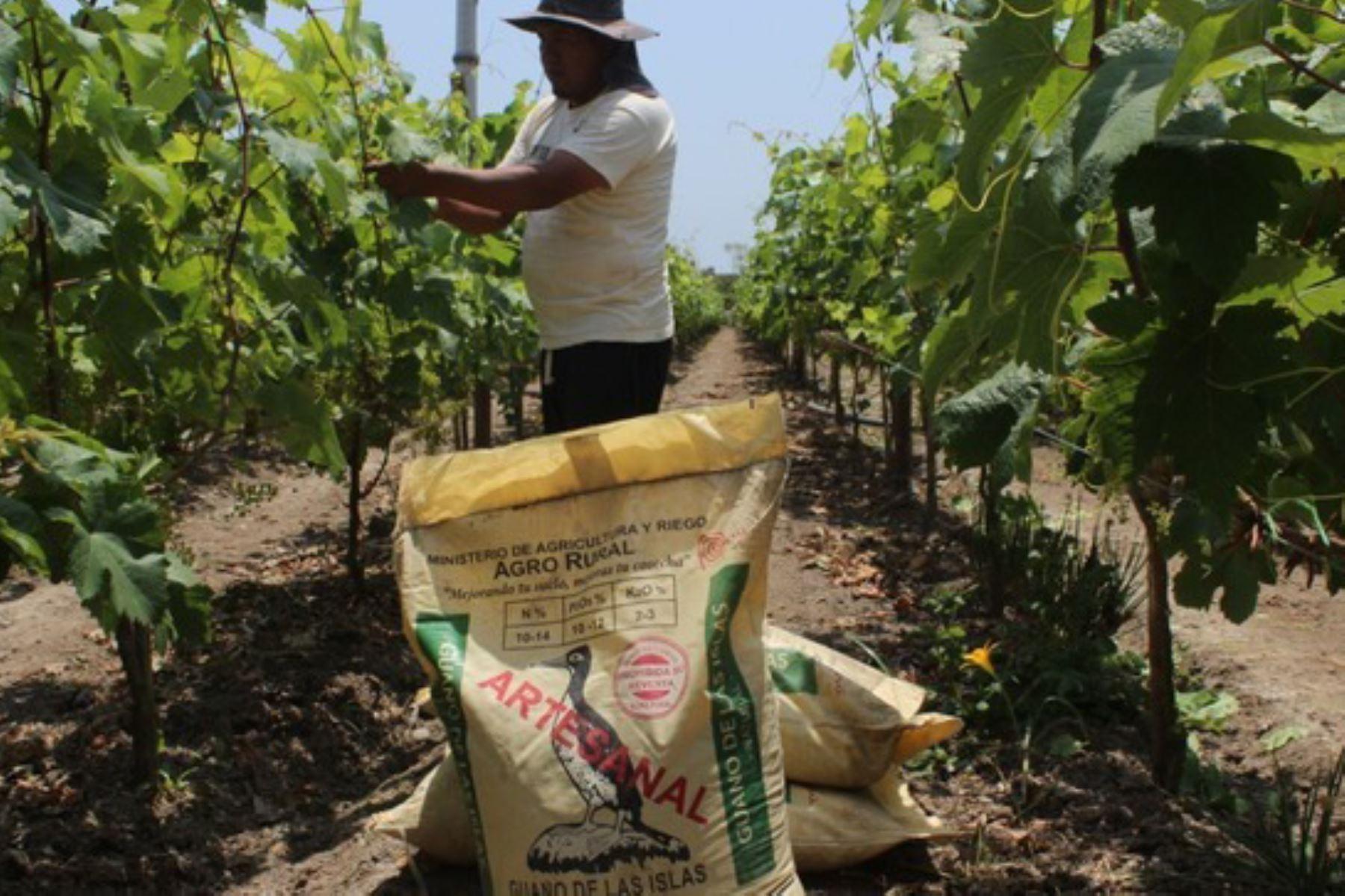Agro Rural ha programado atender hasta noviembre con 2,020 toneladas de guano de las islas a los productores que practican la agricultura familiar en Apurímac. Foto: ANDINA/Difusión