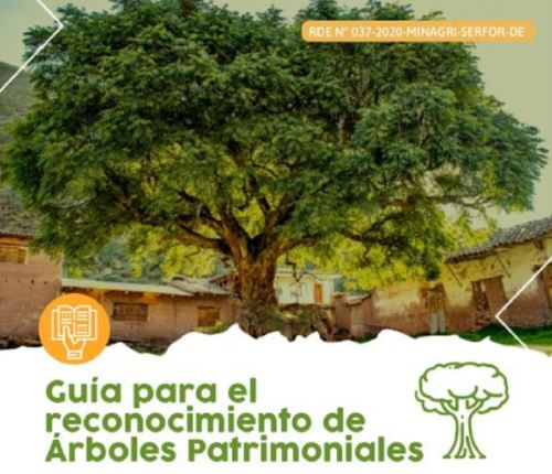 El Servicio Nacional Forestal y de Fauna Silvestre aprobó la guía que orienta a las autoridades y a los ciudadanos sobre el procedimiento para la identificación, postulación y reconocimiento de árboles de especial importancia dentro de su ámbito geográfico, denominándolos árboles patrimoniales.