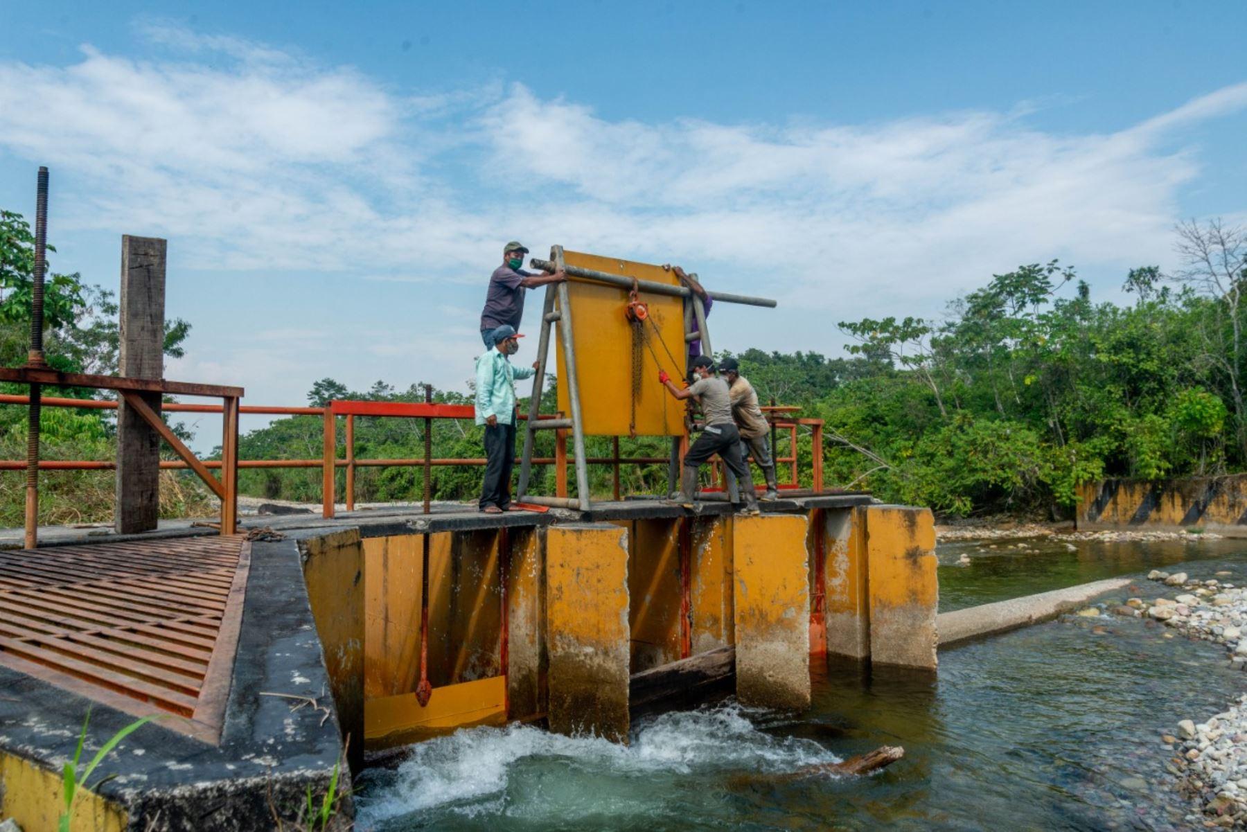 Alto Huallaga: Midagri ejecuta obras de mejoramiento de riego y reforestación