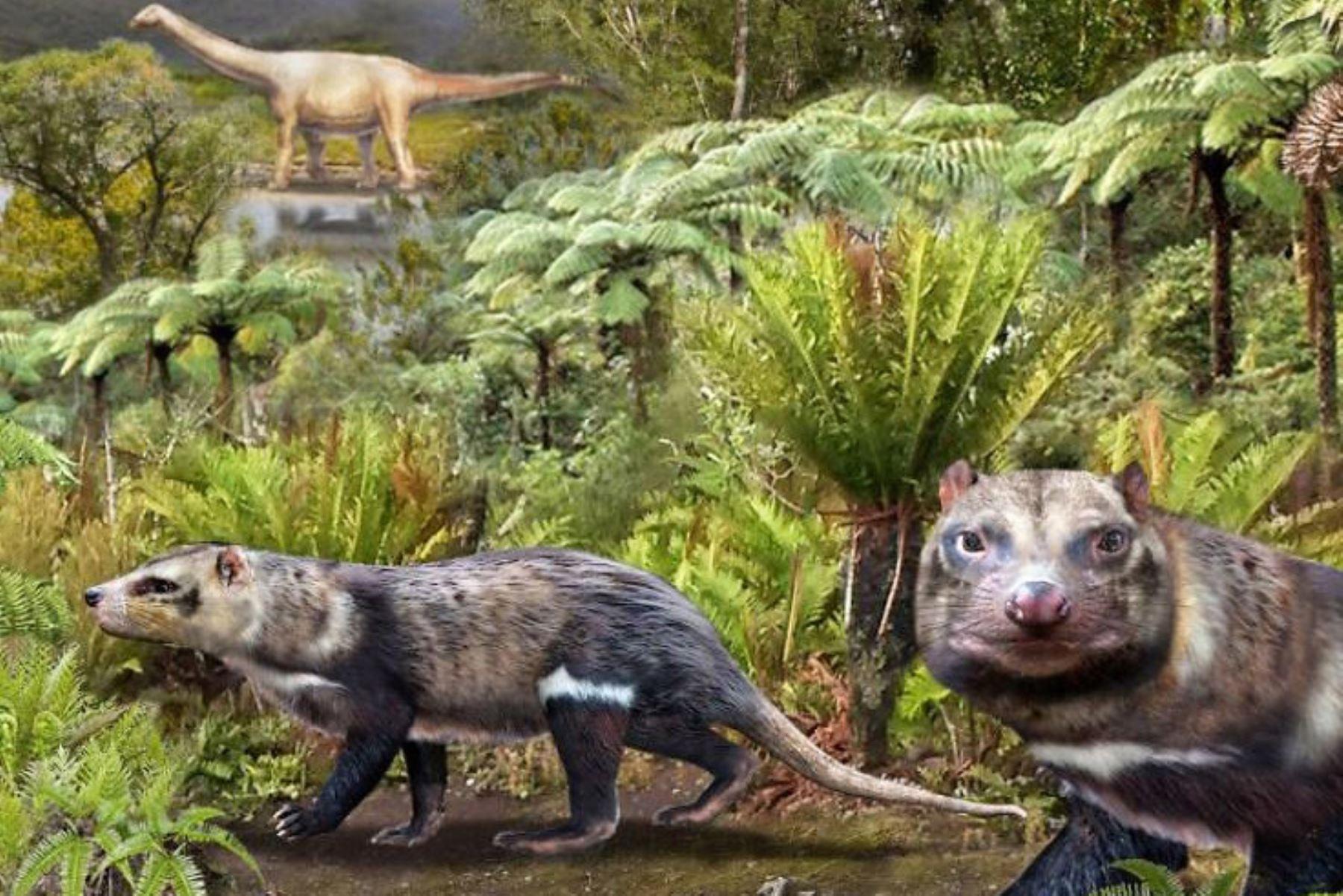 El hallazgo se produjo en un lugar que se cree es uno de los reservorios de fósiles de dinosaurios más grandes de la región. Foto: Instituto Antártico Chileno