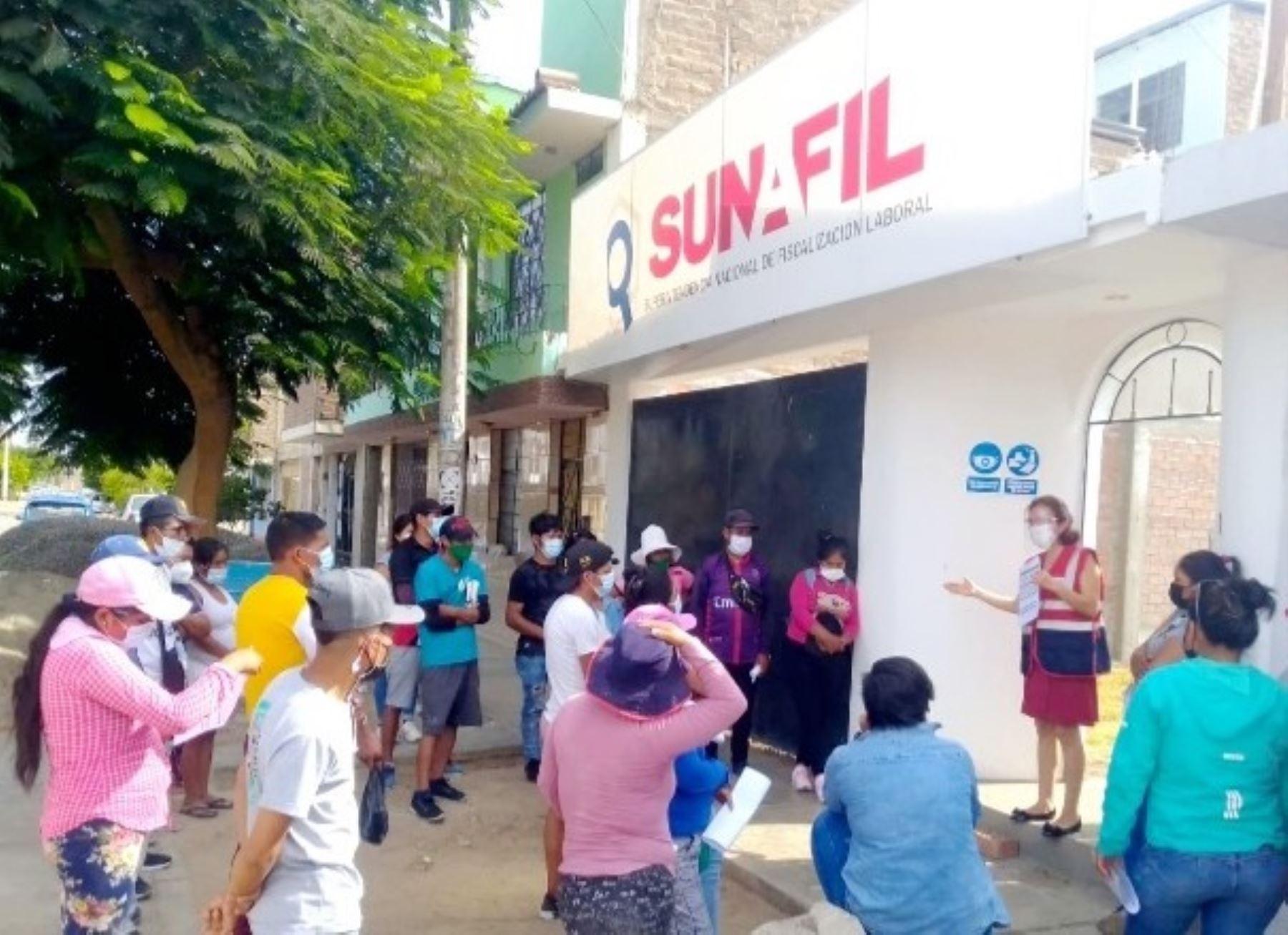 Sunafil investiga en Ica denuncia sobre presuntos despidos arbitrarios que presentaron trabajadores agrarios. Foto: ANDINA/difusión.