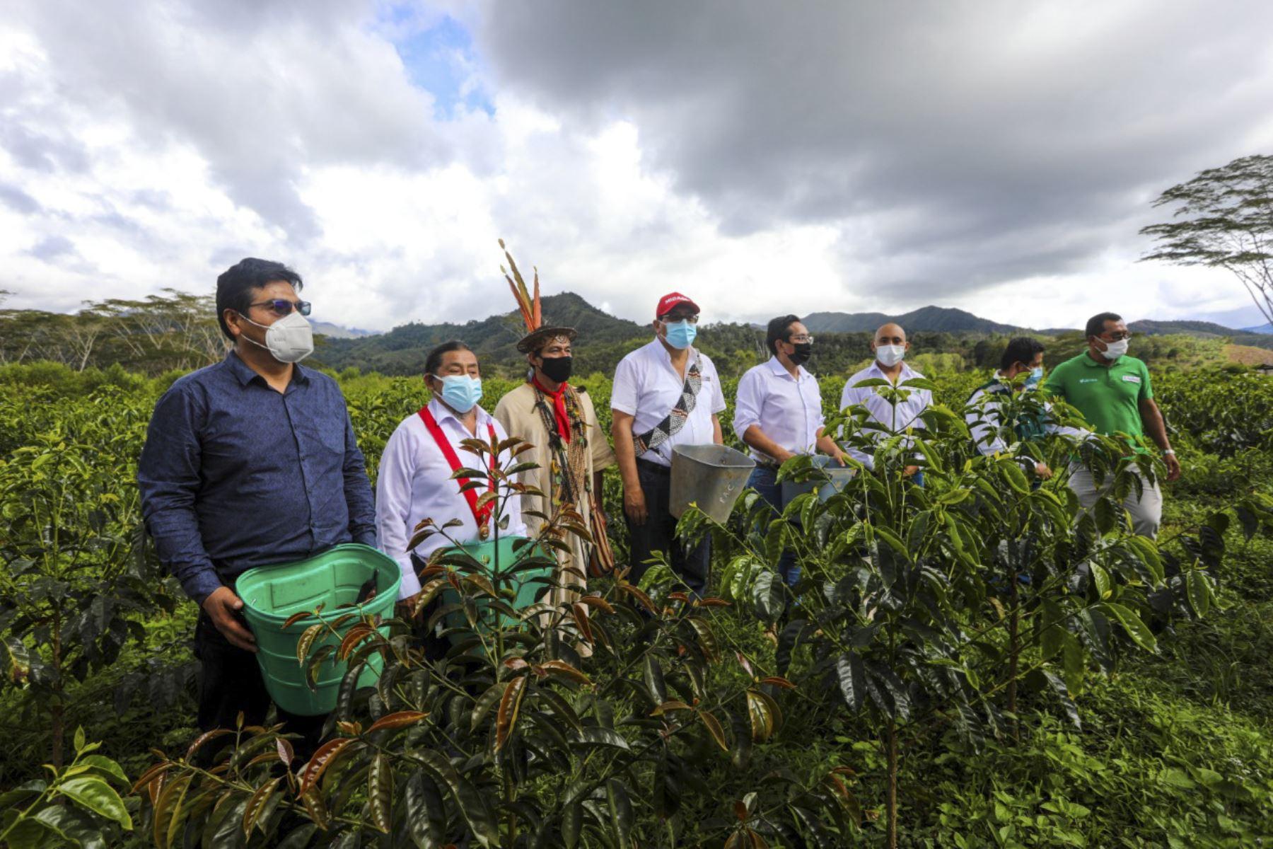 El proyecto de mejoramiento de los servicios de asistencia técnica y capacitación para el desarrollo de cinco cadenas productivas agrícolas de pequeños productores cuenta con una inversión de 10 millones de soles. Foto: ANDINA/Difusión