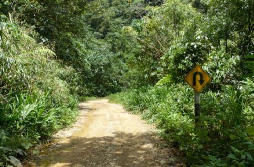 La sociedad civil presentó una propuesta para lograr una infraestructura vial sostenible que contribuya a reducir la deforestación amazónica.