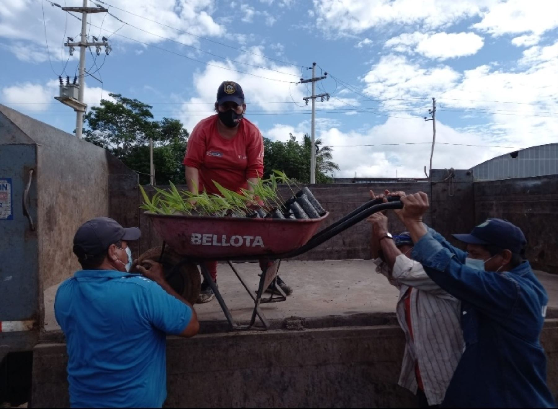 San Martín: Recuperarán ribero del río Mayo con 7 500 plantones en distrito de Cuñumbuque
