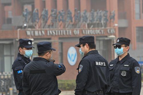 Los servicios de inteligencia están cooperando con otras agencias gubernamentales y universidades para tratar de determinar la procedencia exacta del virus. Foto: AFP