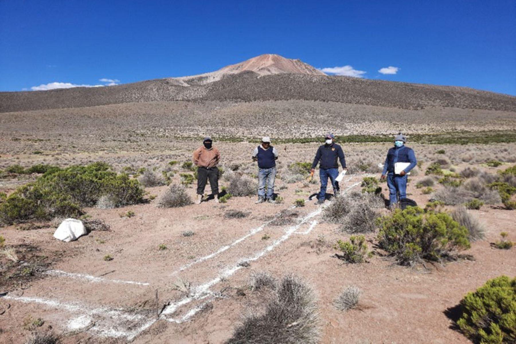Con el trazado en terreno definitivo y excavaciones se inició la construcción de cobertizos en Candarave, Palca y Tarata. Foto: ANDINA/Agro Rural