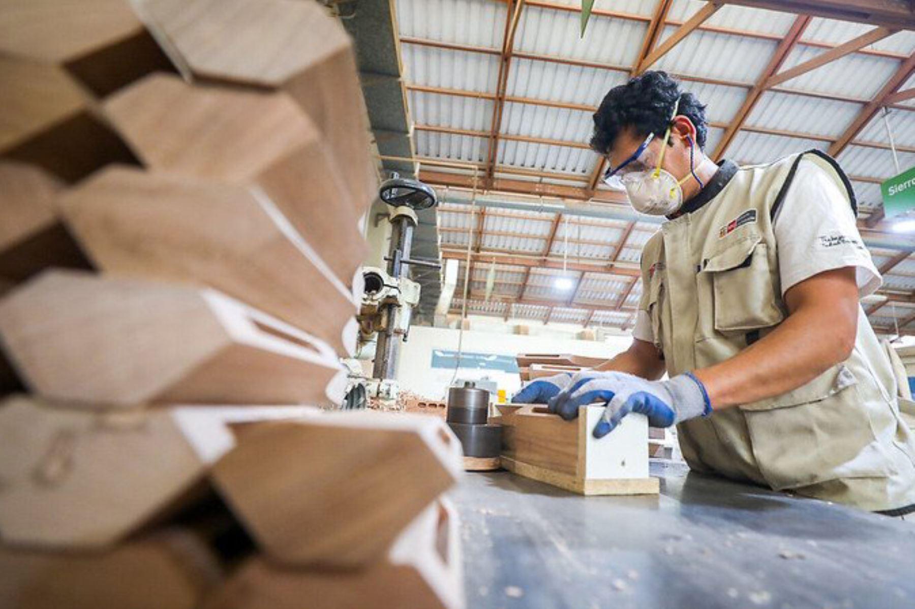 Trabajador. Foto: ANDINA/Difusión