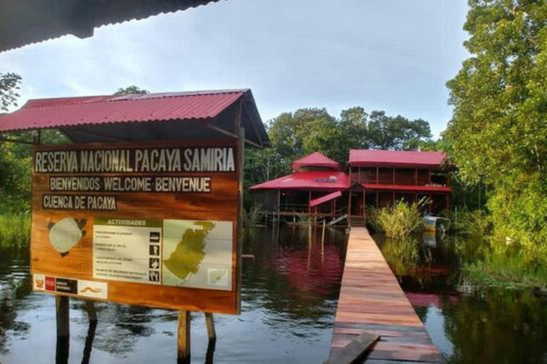 La reserva nacional Pacaya Samiria es uno de los principales destinos de naturaleza de la región Loreto, el la selva norte peruana.