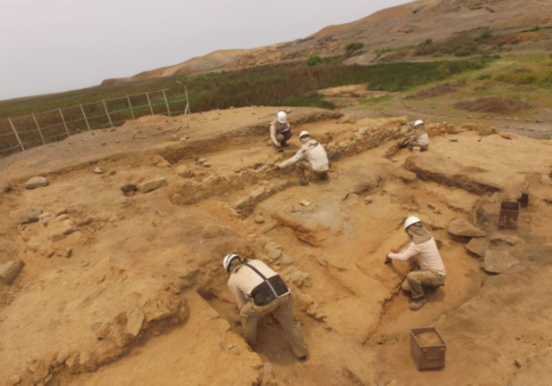 Gracias al programa Caral en la Escuela de la ZAC, los niños y jóvenes de los colegios de la provincia de Barranca han recibido clases especiales sobre la Civilización Caral y visitaron los sitios arqueológicos.