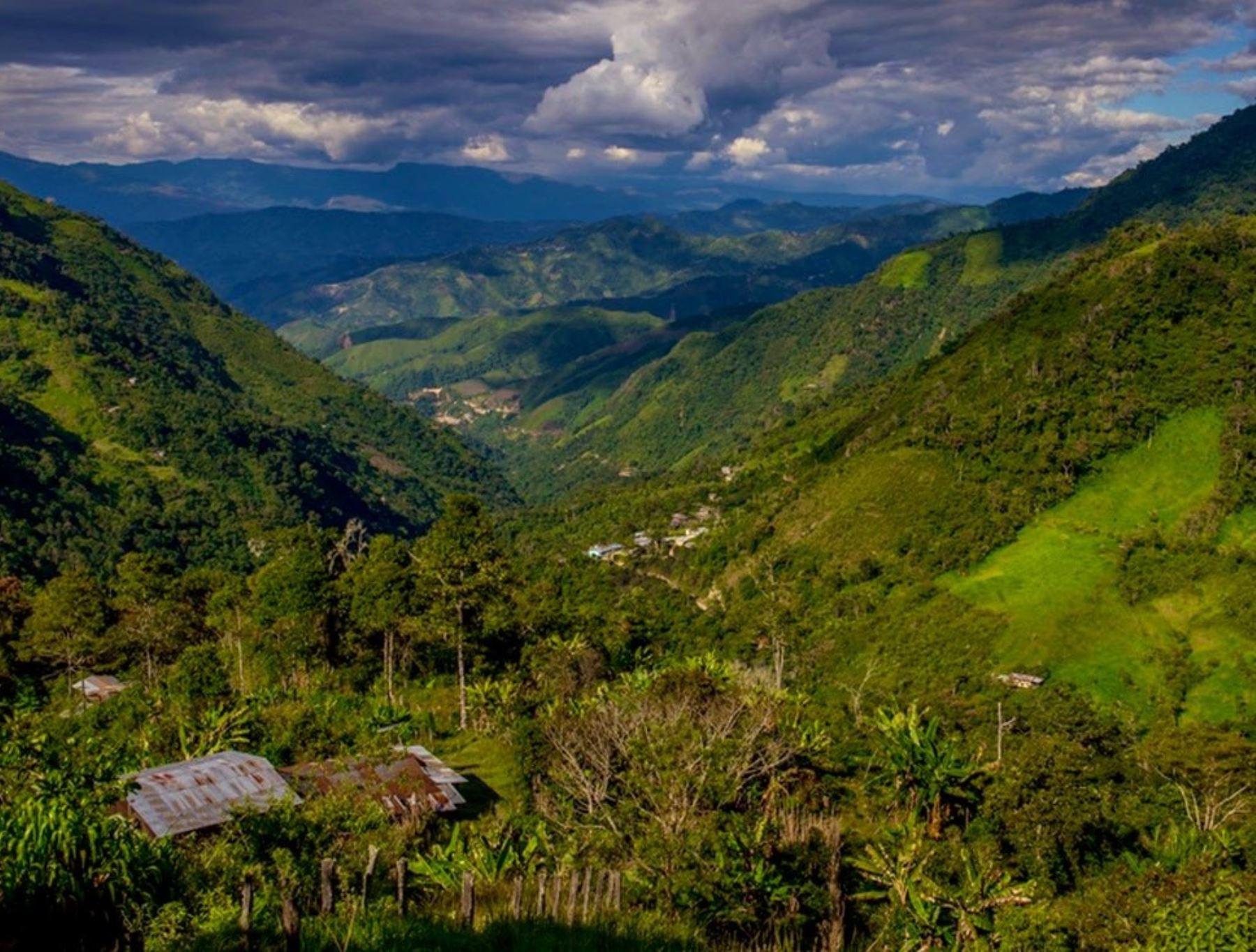 Cajamarca celebra la creación de una nueva área de conservación regional Páramos y Bosques Montanos de Jaén y Tabaconas que alberga una variada diversidad biológica. ANDINA/Difusión
