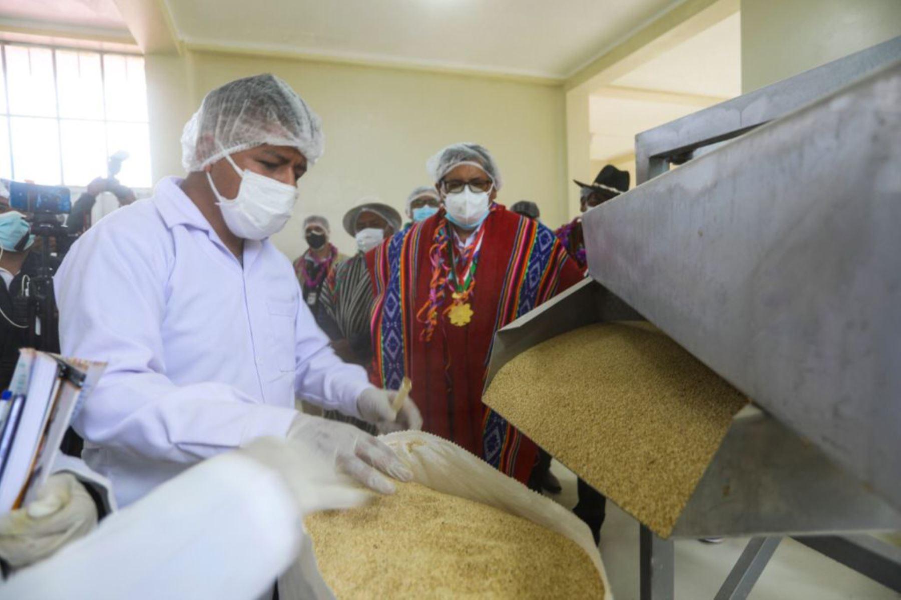 Más de un millón soles se invirtió para que 50 familias de la Asociación de Productores Agropecuarios Chaupi Sahuacasi se vean beneficiadas.