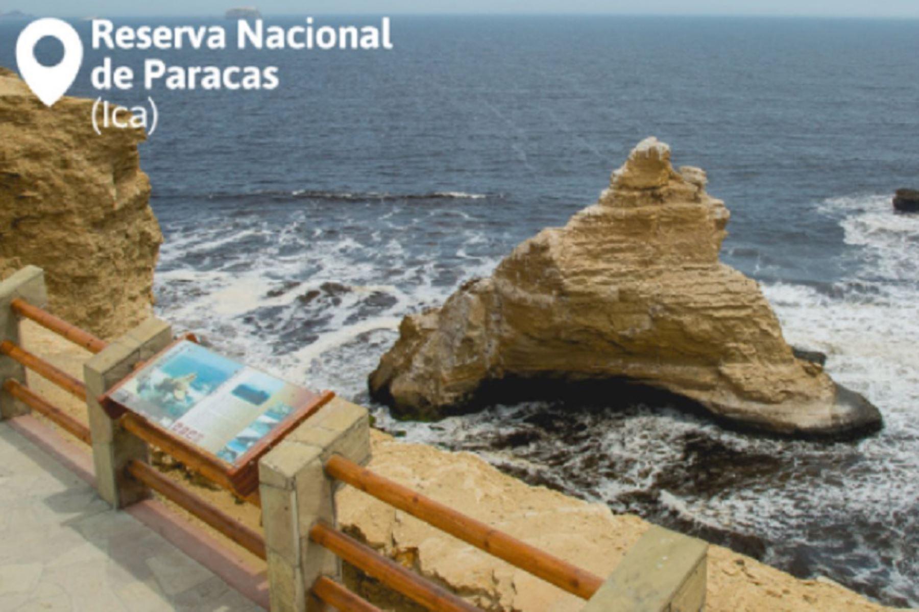 La Reserva Nacional de Paracas es uno de los destinos que puede visitarse sin límites de aforo. ANDINA/Difusión