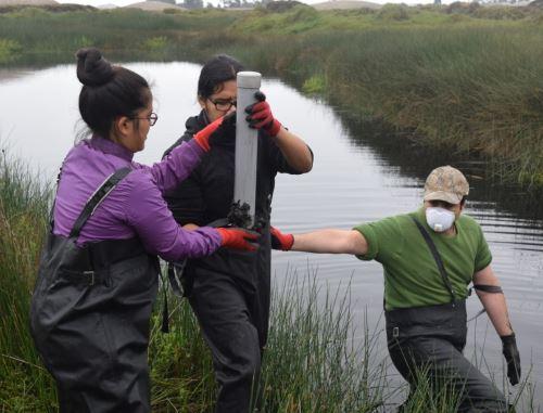 Investigadores peruanos desarrollan un proyecto que busca determinar el potencial valor económico de los humedales.
