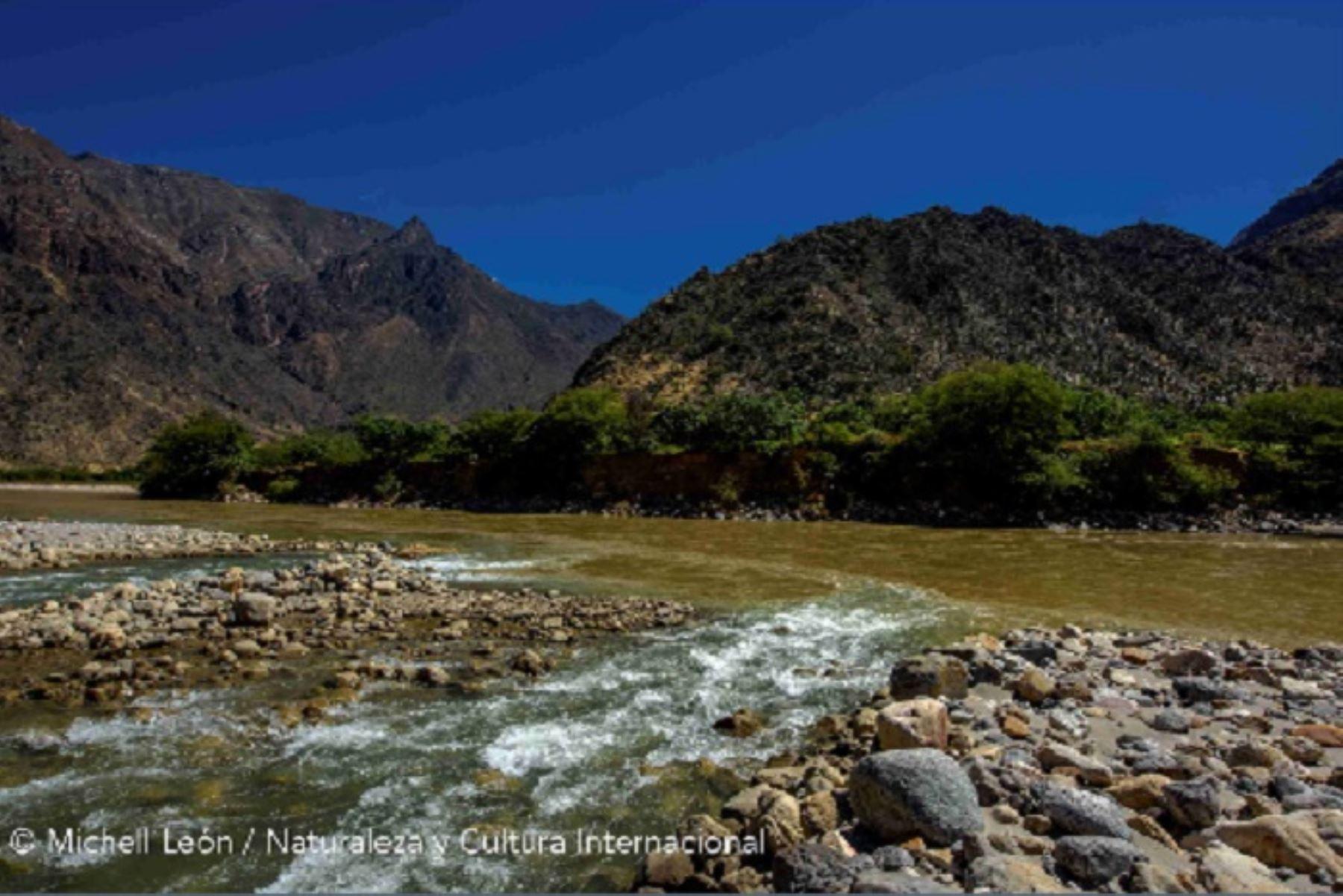 Con la nueva Área de Conservación Regional Bosques Secos del Marañón, se protegerá 21, 794.71 hectáreas, de una de las ecorregiones escasamente representadas en el SINANPE (0.6 % actualmente); donde se ha registrado 65 especies de flora, 55 especies de aves, 4 de reptiles y 5 mamíferos.
